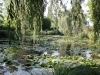 Giverny.lily.pond