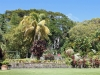 romney-manor_-st_-kitts_