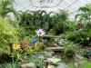 24phipps-conservatory6-13