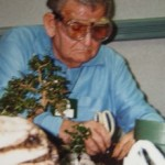 George Gracey, Bonsai-Meister