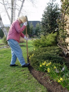 Right after the ground thaws from winter is a good time to edge the beds. The soil is soft at this time.