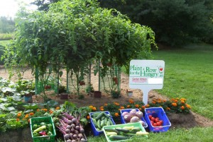 Plant a Row for the Hungry is a national program with roots reaching out locally to the Harrisburg area.