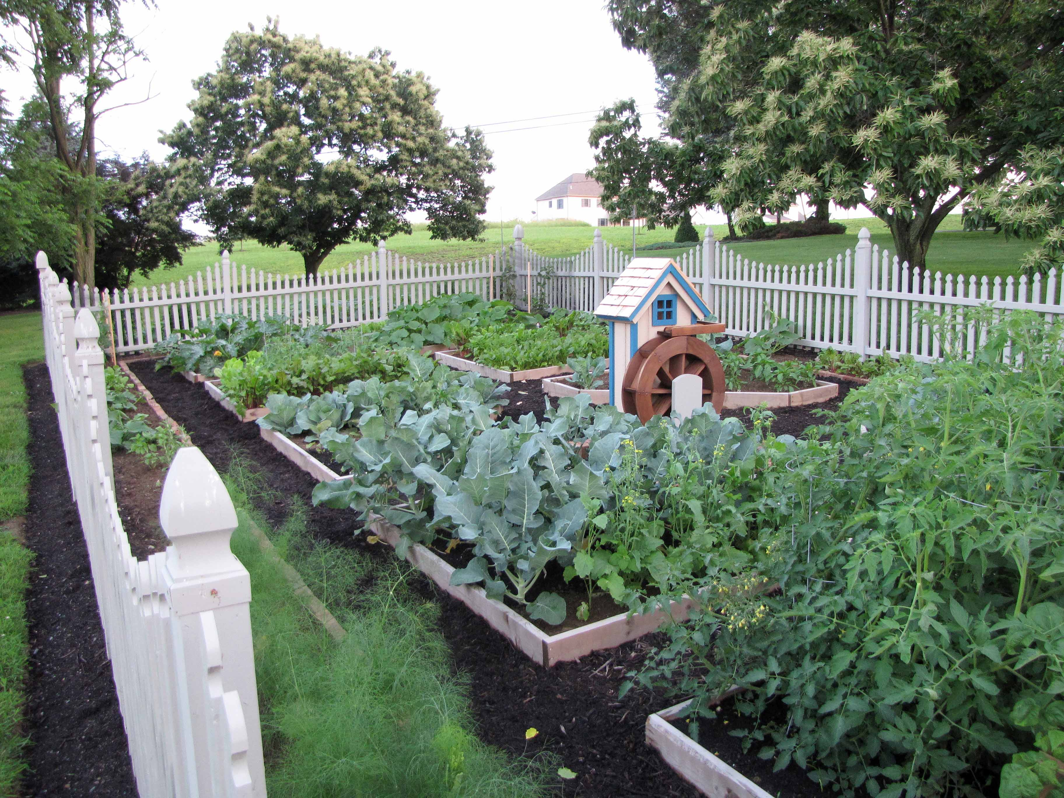 Backyard Raised Vegetable Garden Design : Garden Design Raised Beds ? Small Backyard Landscaping Ideas
