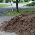 Mulch Thought Went into This