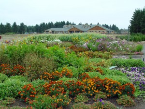 The Oregon Garden with the Resort in the background.