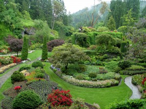 The view overlooking Butchart's magnificent Sunken Garden.