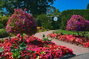 Some of the color at Kingsbrae Gardens.