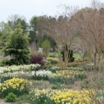 See Gardens with George in 2014