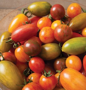 A mix of Artisan tomatoes.