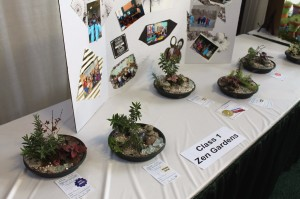 Some of Harrisburg YWCA Junior Gardeners' table-top Zen gardens.