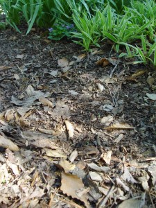 Rubber mulch is an alternative to leaves and wood mulch... but there are possible pitfalls.