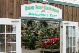 Another of our favorites, especially for annuals -- Briar Rose Greenhouse.