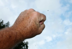 Don't know if you can see them or not, but blackflies are landing on and hovering around this fist in the air.