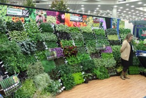 The MANTS show is where garden centers go to nail down their plant and product lineup for the coming year.