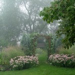10 Tips for Four-Season Gardens