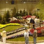 10 Tips for Making the Most Out of Garden Shows