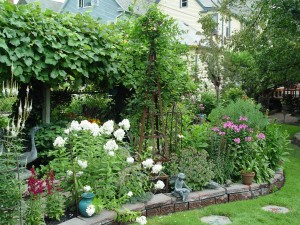 This Buffalo, N.Y., back yard uses a mixed garden to screen out the neighbor's yard.