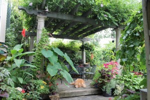 A pergola gives privacy and enclosure to this patio.