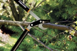 Loppers are better cutting tools for mid-sized branches. Credit: Fiskars