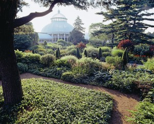 A small part of the New York Botanical Garden in summer.