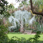 Shorten Winter with Florida Gardens