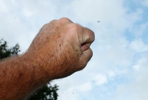 Notice the black flies landing on and swarming around this fist in the air.