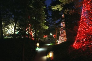 Some of Longwood Gardens' half a million outdoor lights.