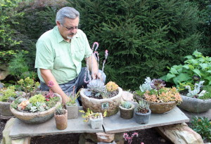 Mike Larkin with just a few of his hypertufa potted succulents.
