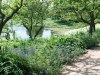 ChicagoBot.lakeside.garden