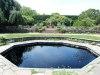 ChicagoBot.walled.garden.pool_