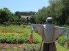 Hywet.Great_.Garden1