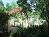 Morton.Arb_.childrens.garden