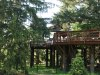 Morton.Arb_.tree_.walk_