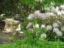 George's Gardens