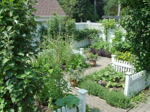 A veggie garden in Frelinghuysen's home demo section.