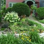 Blooming Neighbors
