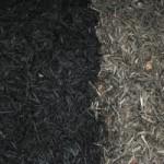 Bleeding mulch, sacrificial cabbage and hydrangea-whacking