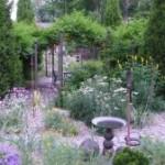 A No-Water Garden