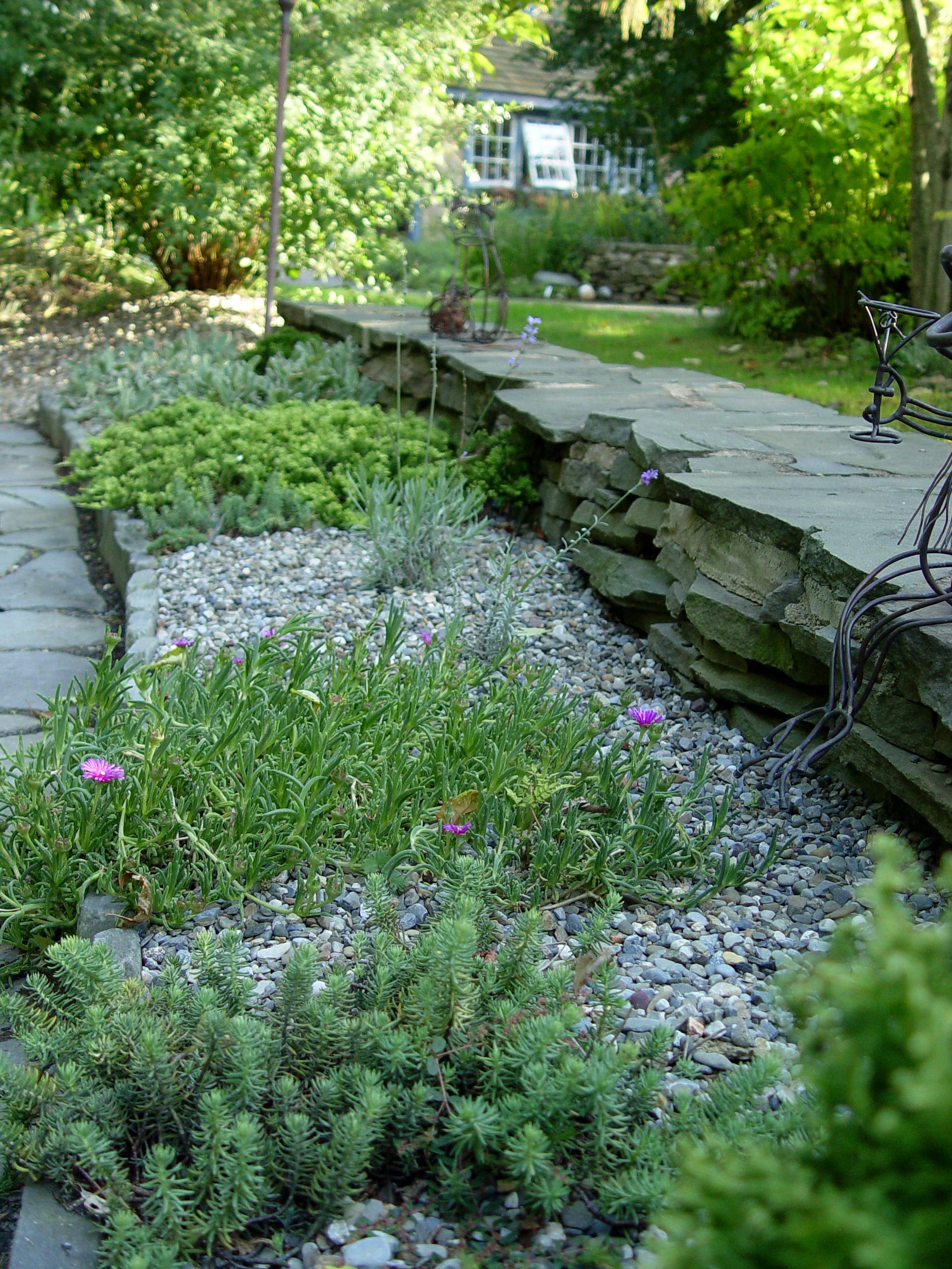 Garden Housecalls A No Water Garden