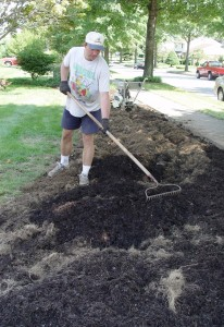 It's better to prepare whole beds for planting than individual holes.