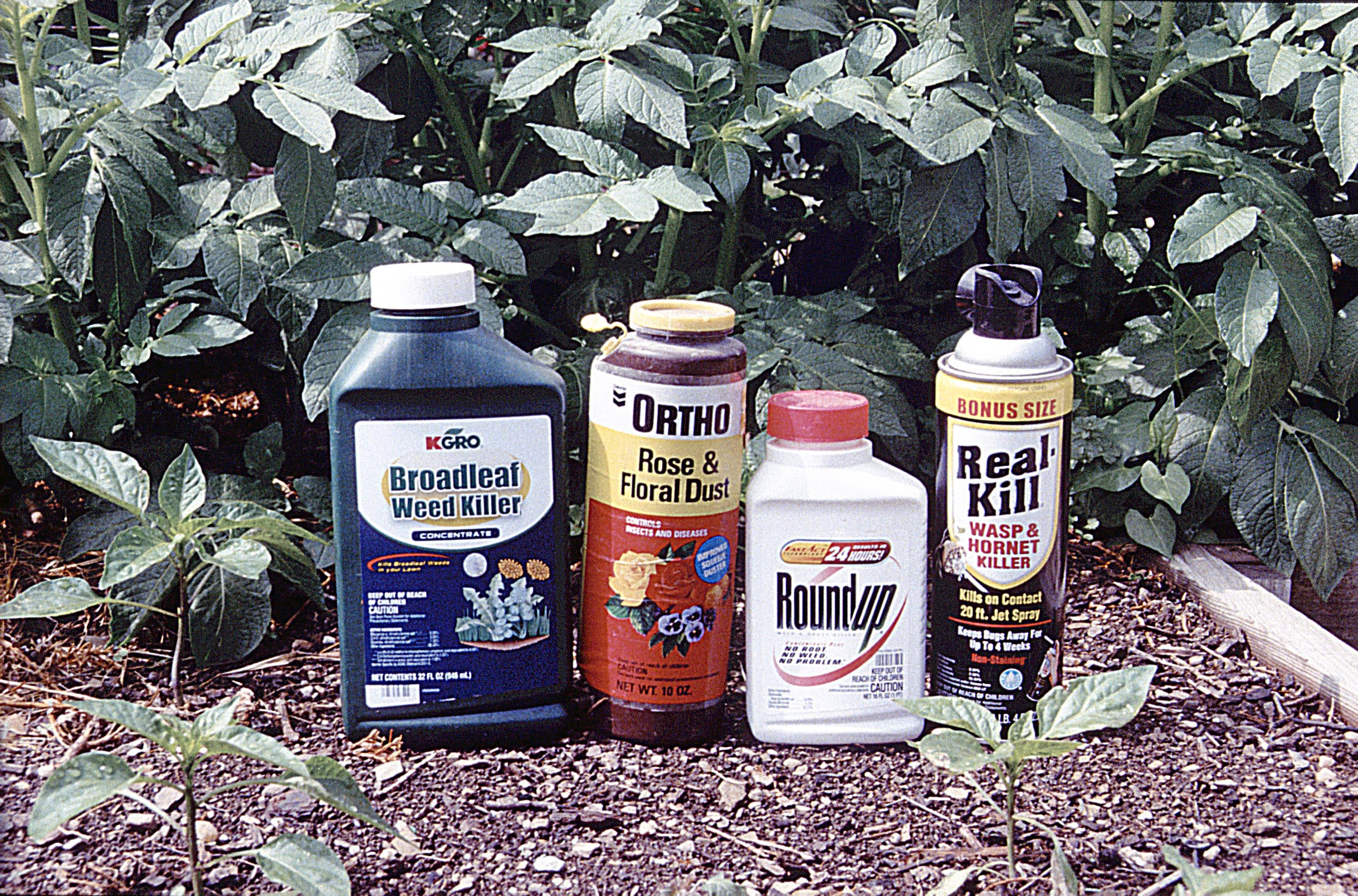 Top 10 reasons why you really should read the pesticide for Garden pesticides