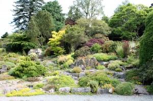 Holehird's Rock Garden.