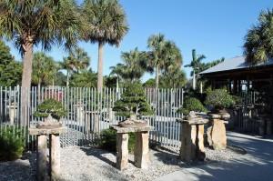 The James J. Smith Bonsai Gallery of tropical bonsai specimens at Heathcote Botanical Gardens.