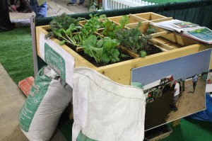 One of Your Garden Solution's table garden boxes, planted in Square-Foot-Garden style.