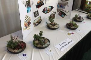 Some of Harrisburg YWCA Junior Gardeners' table-top Zen gardens.