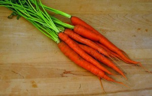 "Carrot ""Sugarsnax' Pinetree Garden Seeds"