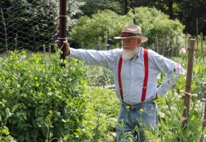 Roger Swain next to his pea fence... 'Oregon Giant' variety, of course.