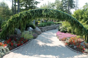"The ""larch arch"" leads visitors into the Lerner Garden."