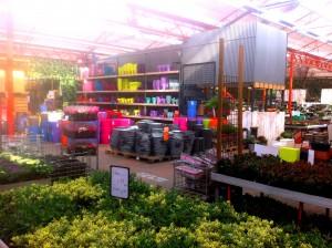 Inside the Osdorp garden center in Amsterdam.