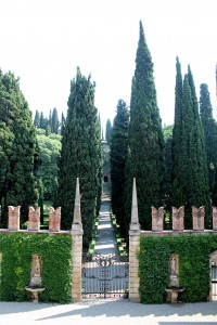 Tall Italian cypresses line the main axis at the back of Giardino Giusti.